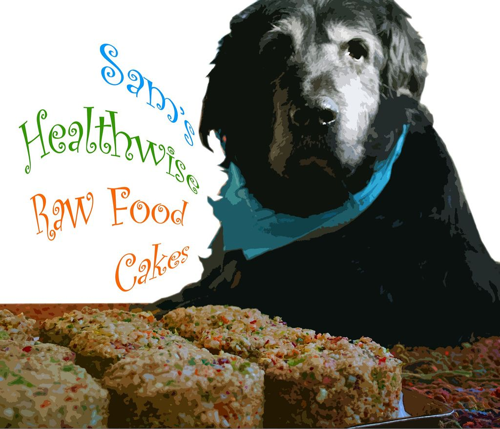 Sam's Healthwise Raw Food Cakes